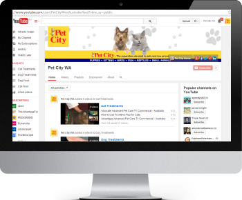 Pet City YouTube